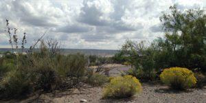 Elephant Butte hiking path